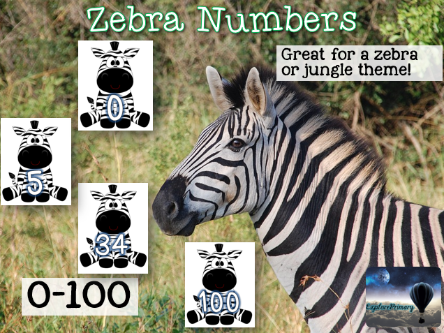 Numbers 0-100 on Zebras for Display