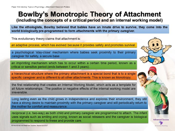 bowlbys ethological theory of attachment John bowlby - from psychoanalysis to ethology has 4 ratings and 1 review   from psychoanalysis to ethology: unravelling the roots of attachment theory.