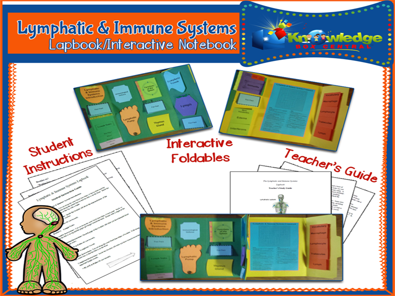 Lymphatic & Immune Systems Lapbook