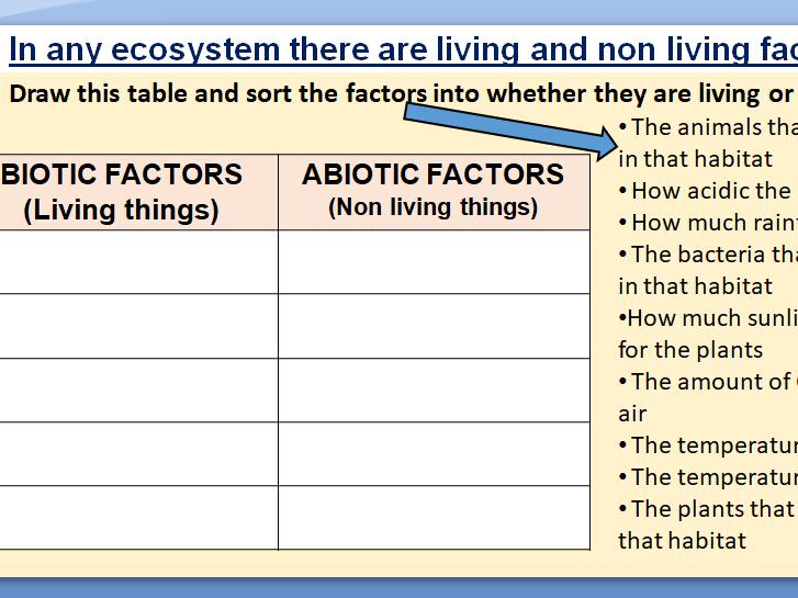 Communities, Ecosystem