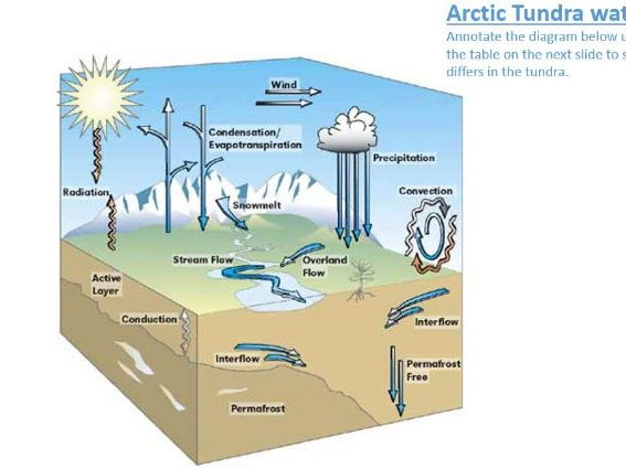 A level; Arctic - Arctic tundra water cycle