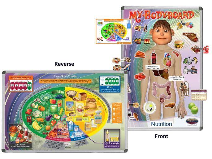 My BodyBoard - Food, Nutrition & Eatwell Guide
