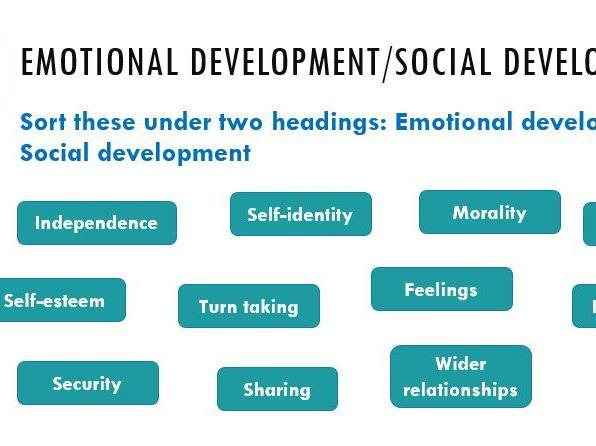 Social & Emotional Development lesson (CPLD L3 Unit 1)