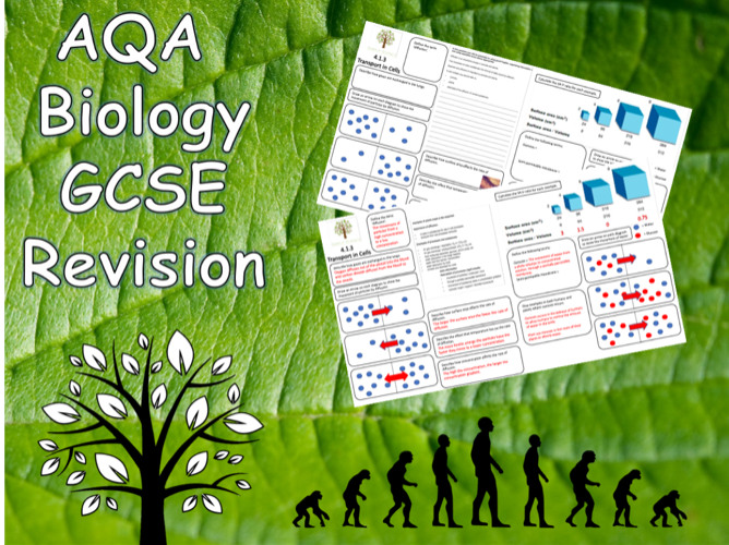 4.1.3 Diffusion, Osmosis and Active Transport - AQA Science Trilogy (Biology) Revision with Answers