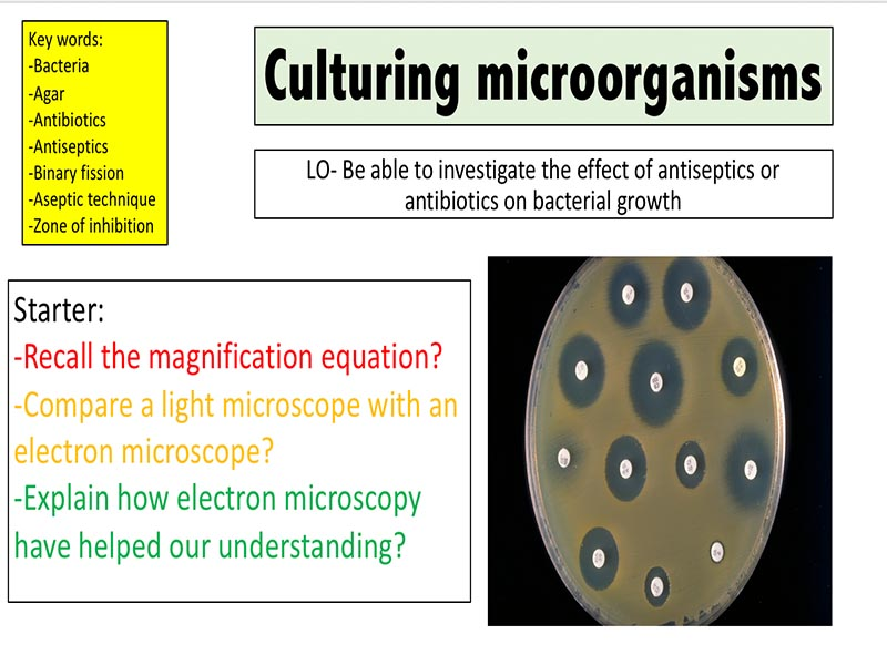 Culturing microorganisms