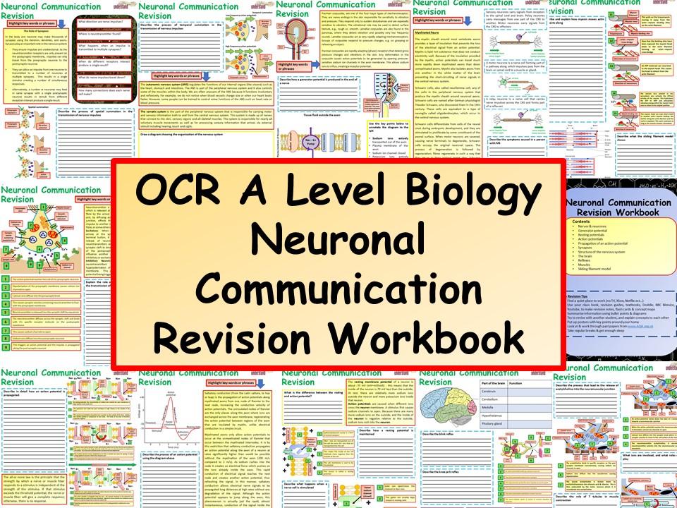 New A Level Biology Neuronal Communication Revision Workbook