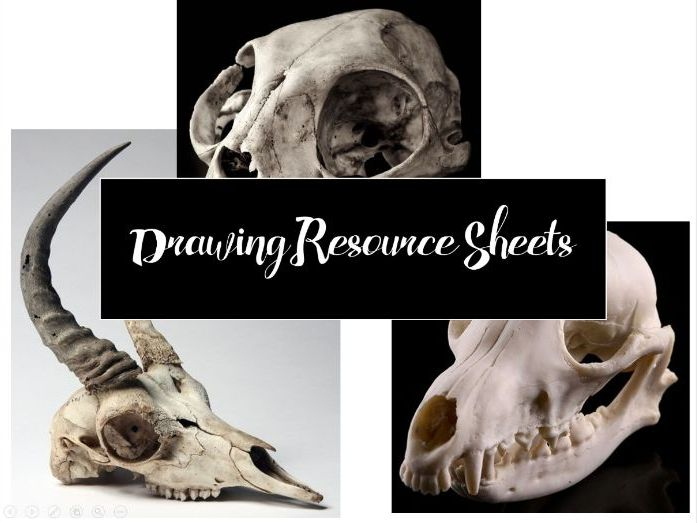 Skull Image Resource Sheet