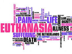 Presentation on Euthanasia (A Level AQA Religious Studies)