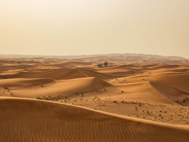 Sahara Desert - Africa Documentary