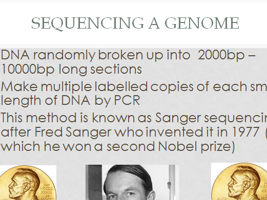 Genomes, Sanger sequencing