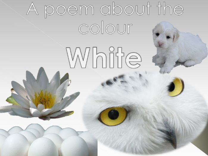 Powerpoint Poem about the colour WHITE. EYFS/KS1.
