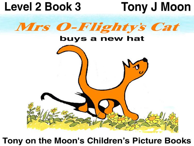 Mrs O'Flightys Cat