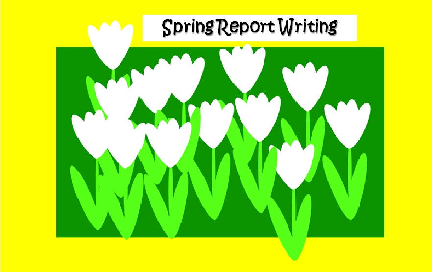 Spring - Non-Chronological Report Writing-  Models / Mind Map Planning / Active Tasks / Assessment