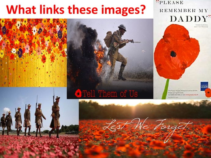 Power and Conflict- Poppies