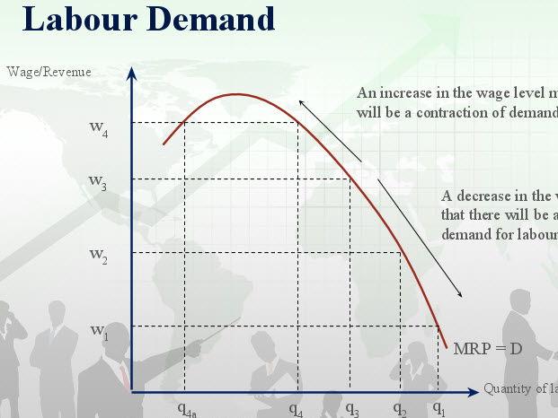 criticism on labour demand