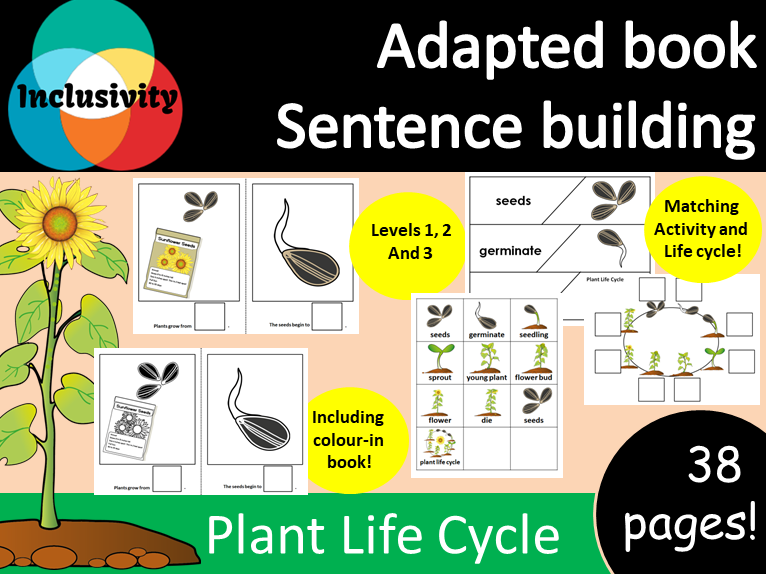 Adapted book Plant Life Cycle; colour-in book, matching activity and life cycle worksheet