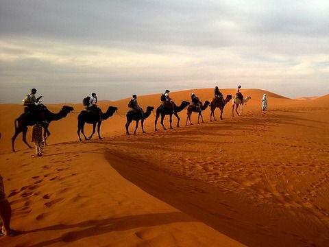 Deserts - cloze procedure sheet
