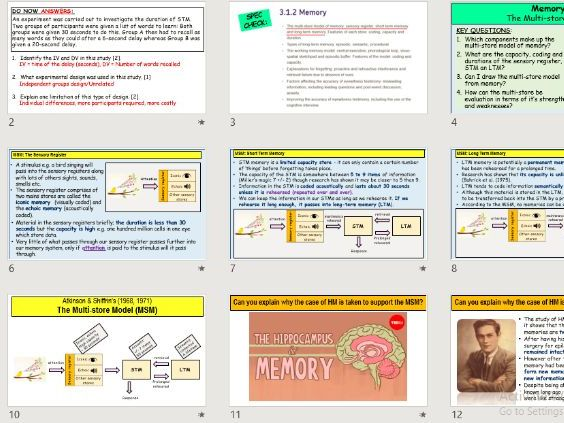 A-Level Psychology - THE MULTI-STORE MODEL (Atkinson and Shiffrin, 1968) - MEMORY