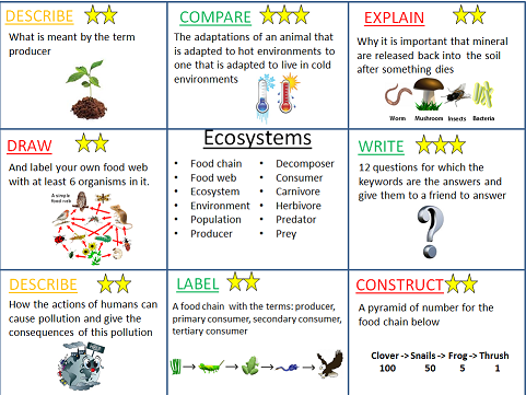 Ecosystems revision activities