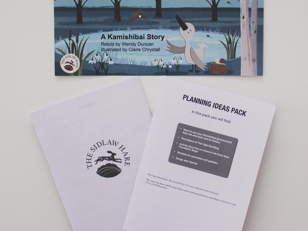 EYFS Planning Ideas Pack for The Ugly Duckling