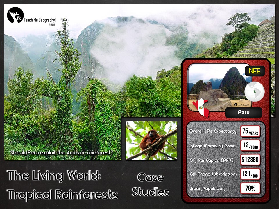 Peru Rainforest Issue Evaluation Booklet Case Study Cards - Teach Me Geography - FREE Resource