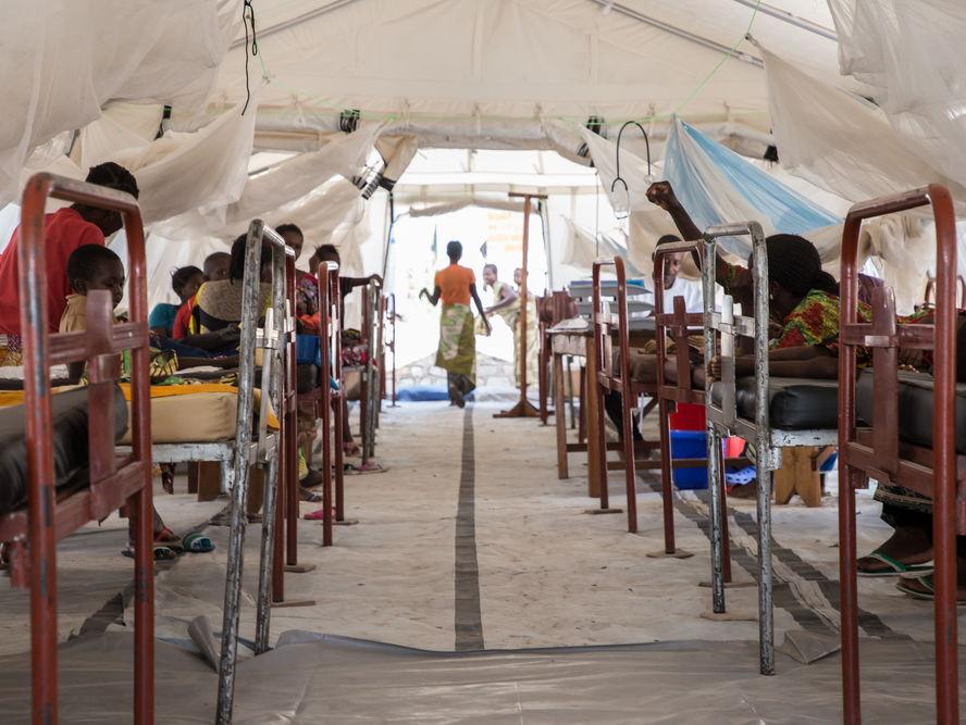 Malaria - Infection - Protist Disease
