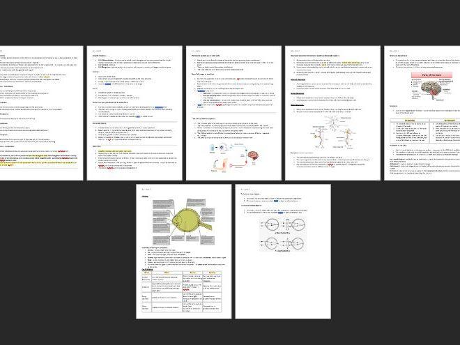 Unit 2 GCSE Edexcel 9-1 Biology Notes