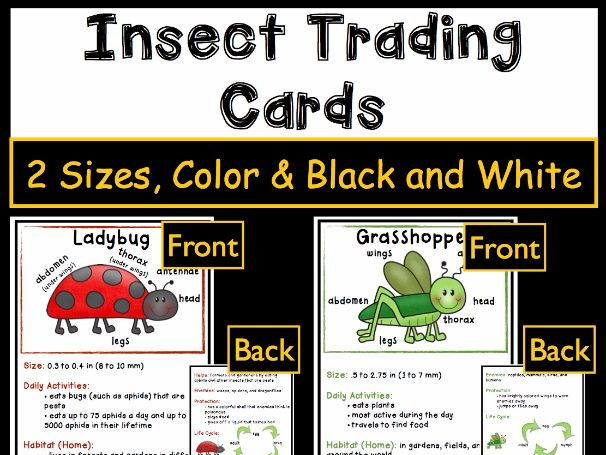 Insect Activities - Trading Cards
