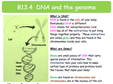 Foundation Text on DNA and the Genome