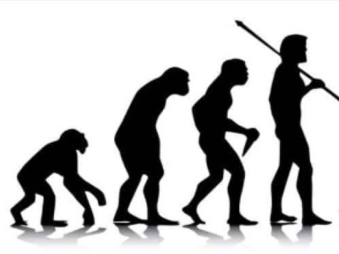 Big Questions in Evolution