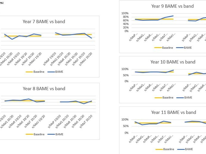BAME Distribution by Sets: 3 Simple Steps Data Tool