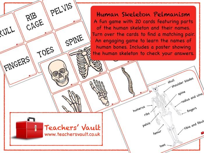 Human Skeleton Pelmanism
