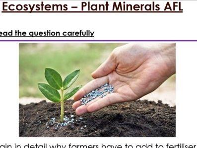 KS3 Ecosystem 6 mark question