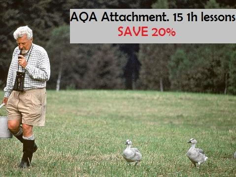 [AQA '15] Attachment whole topic - 15 lessons