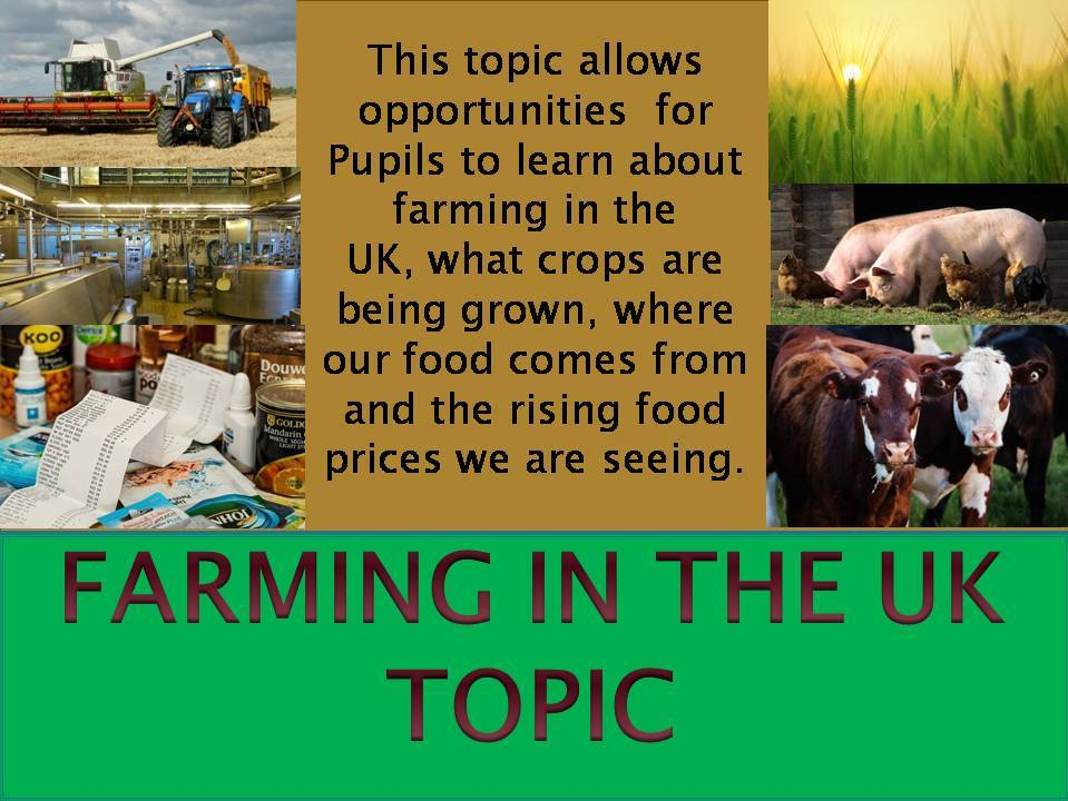 Farming in the UK & world food production