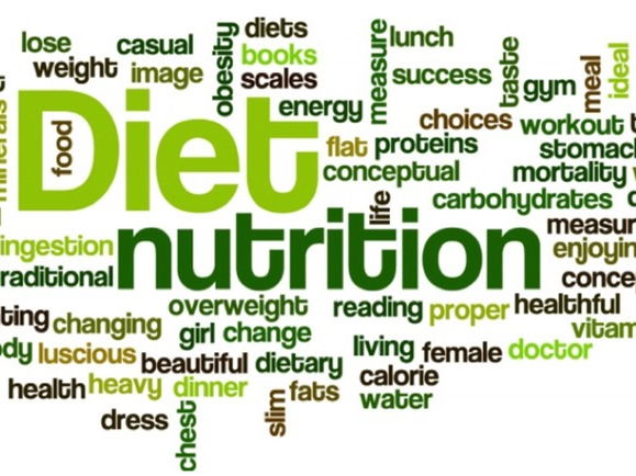 A-Level P.E. Diet and Nutrition (Chapter 4.1)
