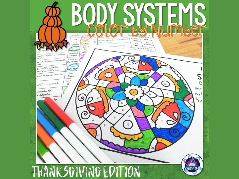 Body Systems Color by Number