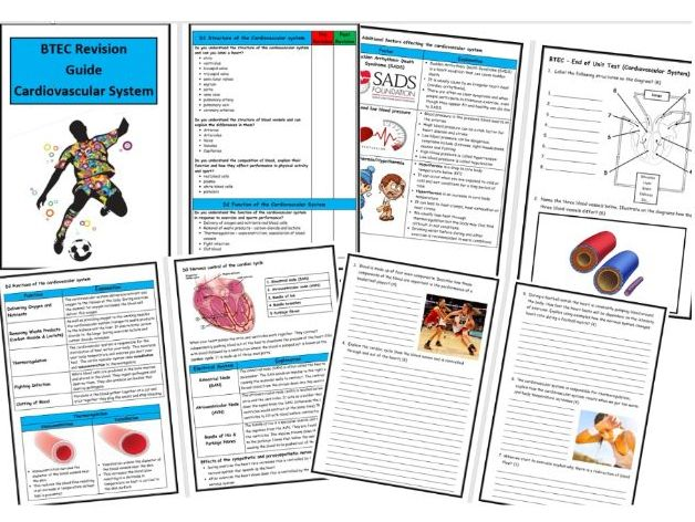 Btec Level 3 - Sport - Unit 1 - Cardiovascular System Revision Guide - Includes Tick List & Test