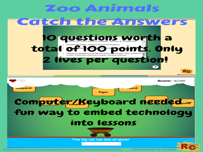 Zoo Animals Catch the Answer Game Year 3-6