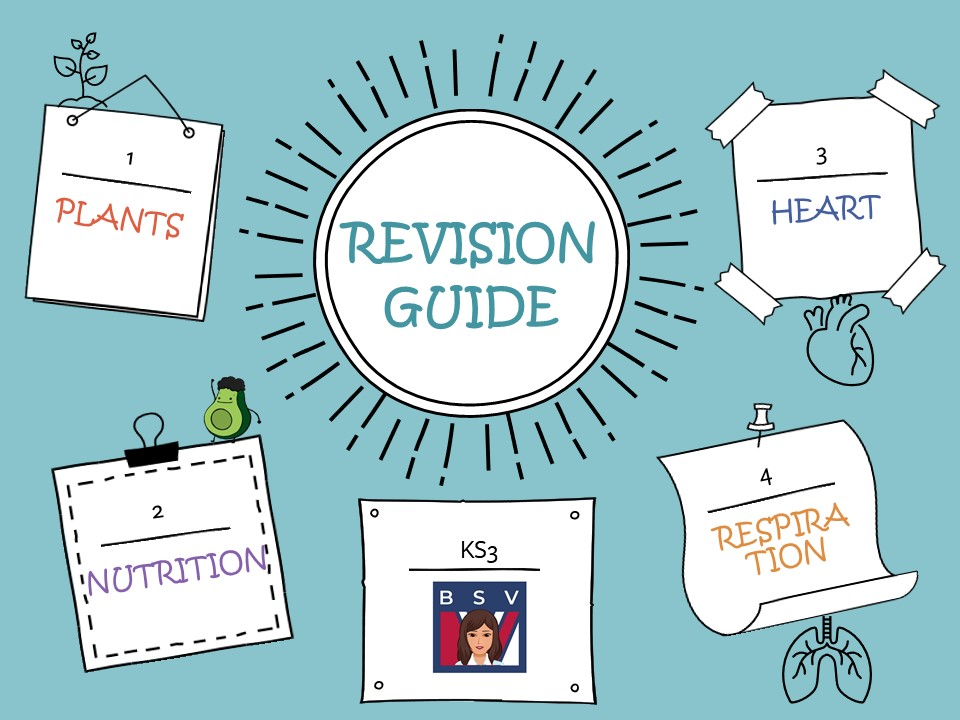 KS3 Biology Revision Guide