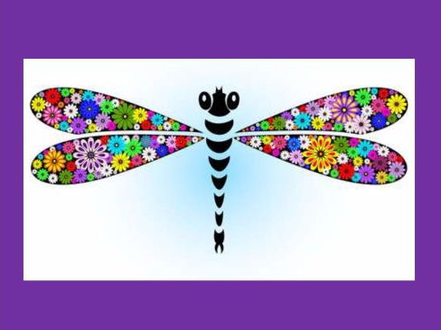 Rainbow Coloured Dragonfly: A song about a dragonfly, it's colours and movements