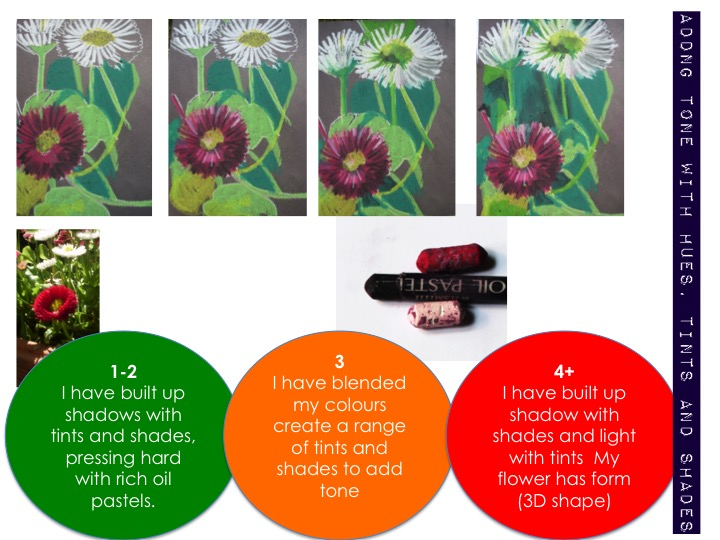KS3 -Observational flower drawing: building tone with colour