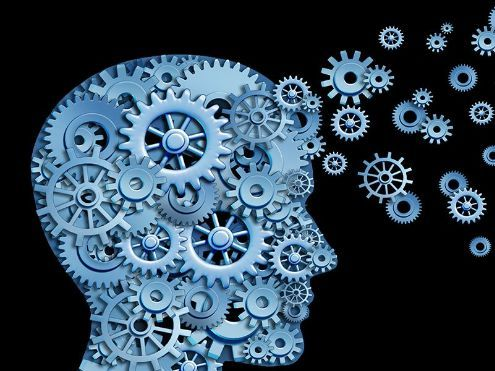 AQA A-level Psychology Cognition and Development – Full Set of Lessons