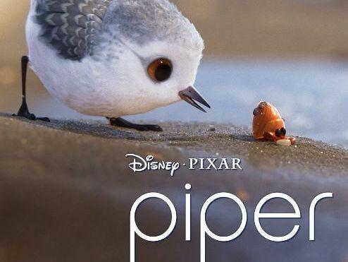 Piper - Pixar Short Film - Differentiated Scaffolded Workbook