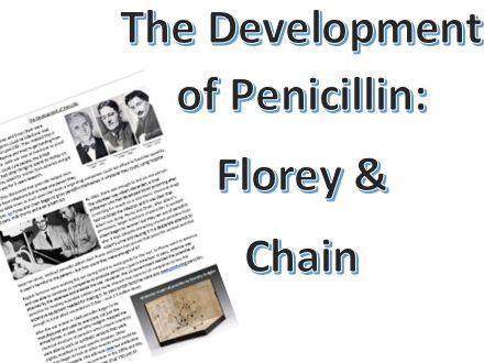 The Development of Penicillin ( 1938 onwards): Information sheet