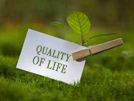 Theme1: Lesson 1: Quality of Life and Standard of Living