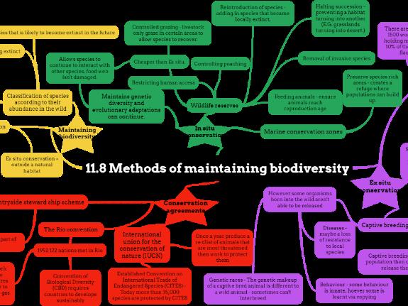 OCR A level Biology Biodiversity Mindmaps