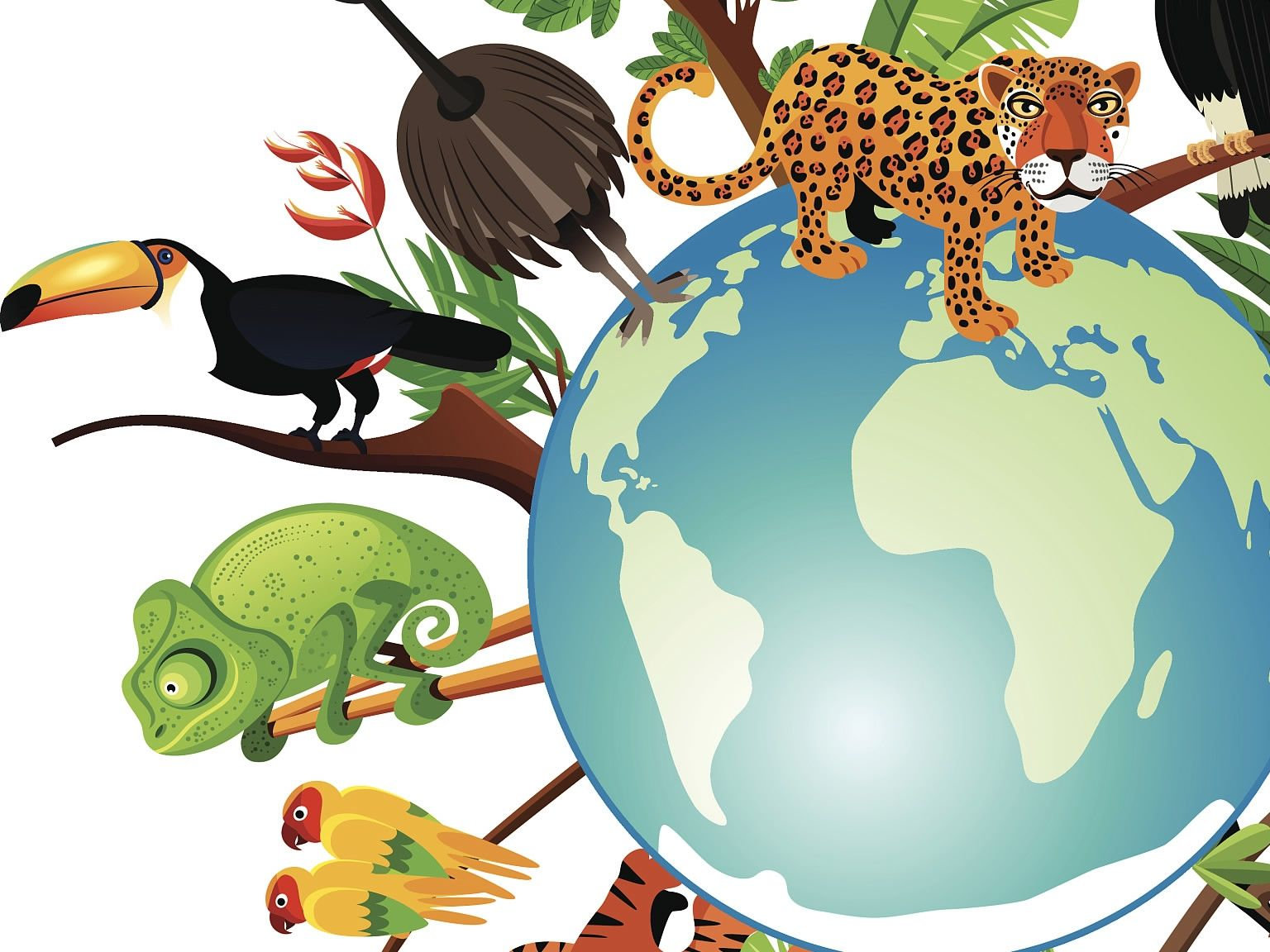 Massive bundle of Ecology, Biodiversity and Evolution Resources for IB and A Level