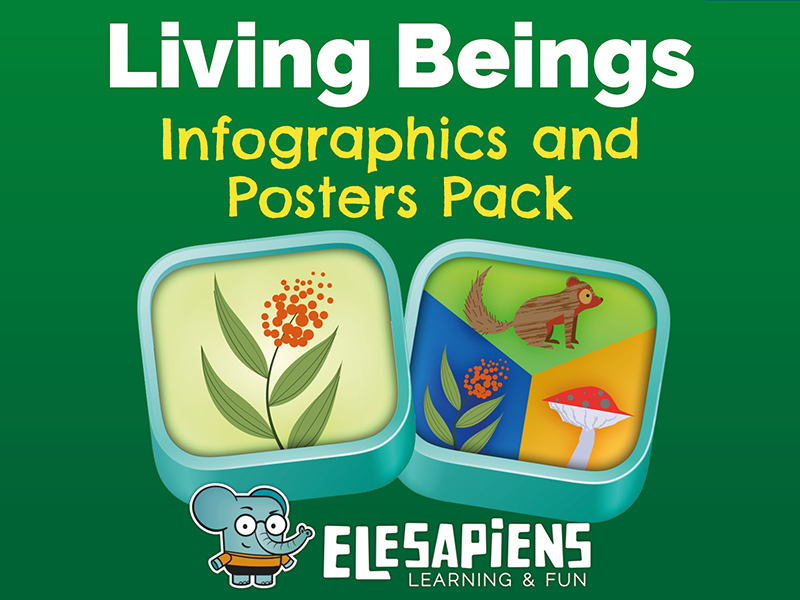 Living Beings Infographics & Posters