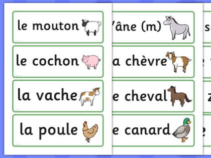 French Planning KS2 - 1 full term - Animals and Colours